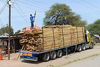 TANZANIA, Tarime District, Tarime, truck with timber / Holztransport, LKW mit Holz