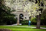 1704-10 GCS Spring 0051<br /> <br /> 1704-10 GCS Spring<br /> <br /> April 6, 2017<br /> <br /> Photography by Nate Edwards/BYU<br /> <br /> &copy; BYU PHOTO 2016<br /> All Rights Reserved<br /> photo@byu.edu  (801)422-7322