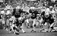 Raiders recover fumble: Jeff Barnes, Steve Sylvester, Peste Banaszak, and Mike Davis. (1978 photo/Ron Riesterer)