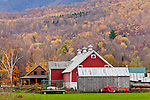 Fall foliage in West Rupert, VT, USA
