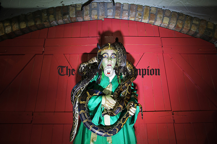 Amy Kinsella of Corbally is adorned by three live snakes at the Animal Magic stall during the Hallowe'en event at Bunratty Castle and Folk Park. Photograph by John Kelly.