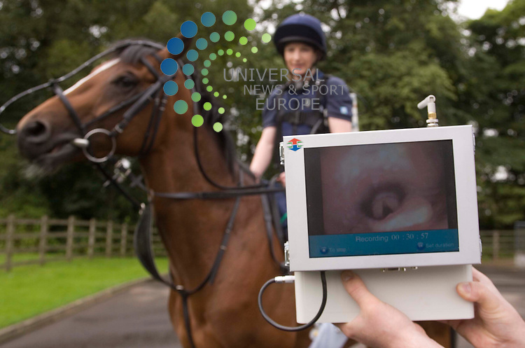 The University of Glasgow Equine hospital demonstrates a  respiritory endoscope which allows them to examine the airways of a horse as it exercises,  revolutionary diagnosis of disease.  Picture shows racehorse, Haggis, fitted with endoscope being put through its paces by jockey Lindsay McKay..8 September 2008. Picture: Maurice McDonald/Universal News And Sport (Scotland).......... ........... .