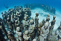 RG40508-D. underwater sculpture garden called The Silent Evolution, made by artist Jason de Caires Taylor. Part of the Museo Subacuatico de Arte, these cement sculptures rest in 25 feet of water off Isla Mujeres and depict real people, including many locals from the Cancun area. Made using special materials which encourage colonization by coral and other invertebrate marine life, and also attract tropical fish species. One goal of this installation is to help form an artificial reef which will reduce tourist pressure on nearby natural reefs.  Mexico, Gulf of Mexico, Caribbean Sea.<br />