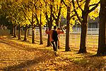 Woman enjoying kicking leaves along path in Autumn