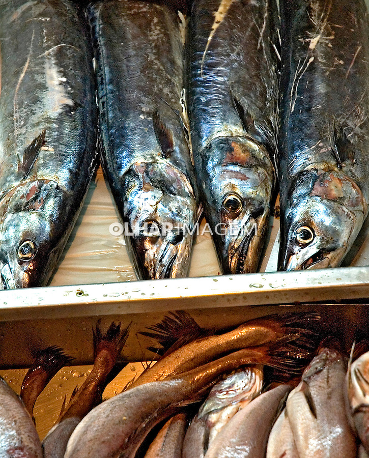 Alimentos. Peixe. Foto de Cris Berger.