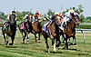 Aigue Marine winning The Robert G. Dick Memorial Stakes (Gr. 3) in a NEW TRACK RECORD at Delaware Park racetrack on 7/5/14
