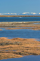 Romanzof mountains of the Brooks Range in the Arctic National Wildlife Refuge, Arctic, Alaska.