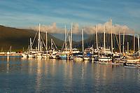 Boats in Marlin Marina at sunset.  Cairns, Queensland, Australia