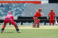 2nd November 2019; Western Australia Cricket Association Ground, Perth, Western Australia, Australia; Womens Big Bash League Cricket, Melbourne Renegades versus Sydney Sixers; Tammy Beaumont of the Melbourne Renegades plays inside the ball - Editorial Use