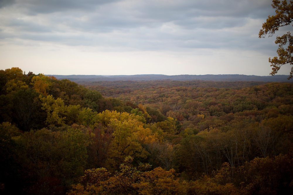 Fall foliage is seen on Friday, Oct. 26, 2014, at Brown County State Park. (Photo by James Brosher)