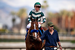 MAR 07: Gamine with Drayden Van Dyke breaks her maiden at Santa Anita Park in Arcadia, California on March 7, 2020. Evers/Eclipse Sportswire/CSM