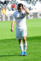 Saturday 22 September 2012 <br /> Pictured: Leon Britton<br /> Barclays Premiership, Swansea City v Everton at the Liberty Stadium, south Wales.