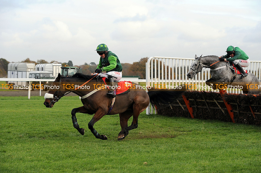 Highland Retreat ridden by Noel Fehily makes a mess of the last flight but goes on to win the OLBG Mares´ Hurdle (Listed Race) Cl1  - Horse Racing at Kempton Park Racecourse, Sunbury, Middlesex - 25/11/2013 - MANDATORY CREDIT: Martin Dalton/TGSPHOTO - Self billing applies where appropriate - 0845 094 6026 - contact@tgsphoto.co.uk - NO UNPAID USE