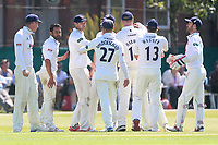 Ravi Bopara of Essex is congratulated by his team mates after taking the wicket of Gareth Batty during Surrey CCC vs Essex CCC, Specsavers County Championship Division 1 Cricket at Guildford CC, The Sports Ground on 10th June 2017