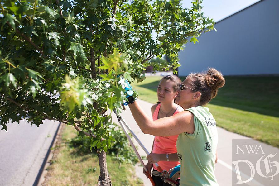 """NWA Democrat-Gazette/CHARLIE KAIJO (From right) Shara McMurtrey, chairman of the Bentonville Parks and Rec advisory board, and Ally Fisher, 14, prune a tree, Saturday, June 9, 2018 along SE """"J"""" Street in Bentonville. <br /> <br /> The Bentonville Parks Conservancy pruned the trees along SE """"J"""" street, between SE 8th Street and HWY 102 Saturday as part of tree maintenance days that it will hold throughout the summer to help develop tree canopies throughout the city's parks and trails. <br /> <br /> The Bentonville Parks Conservancy is a non-profit organization that works with the city to help develop and maintain the city tree canopy and parks. Part of their vision is to develop a volunteer work force that will meet throughout the year to work on tree maintenance as needed by the city and parks department.<br /> <br /> 14 volunteers showed up Saturday to help prune about 100 trees."""