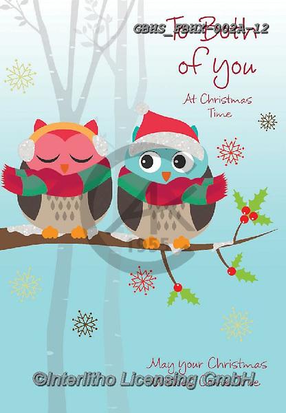 John, CHRISTMAS ANIMALS, WEIHNACHTEN TIERE, NAVIDAD ANIMALES, paintings+++++,GBHSFBHX-002A-12,#xa# ,owls,