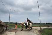 A man steers his bullock cart through the small village road in Bhelaiya village in Raxaul district in Bihar, India.