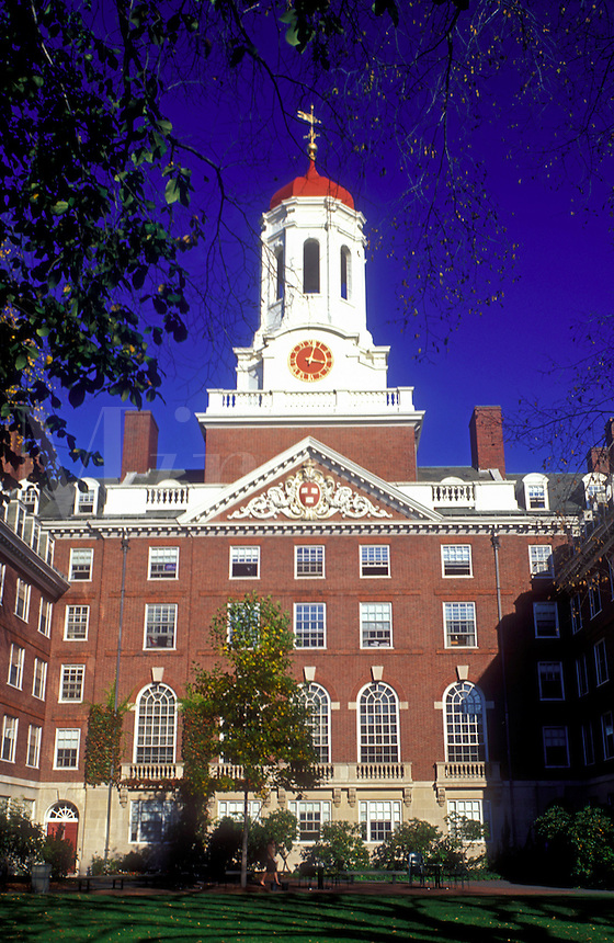 university, college, Cambridge, Massachusetts, MA, Building on the campus of Harvard University in Cambridge in the fall.