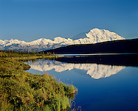 Mount McKinley reflecting in Wonder Lake, Denali National Park, Alaska.  August evening.