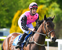 Fannie by Gaslight ridden by Charles Bishop goes down to the start of The Smith & Williamson Fillies' Novice Stakes (Class 5)) i during Afternoon Racing at Salisbury Racecourse on 17th May 2018
