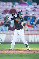 Salem-Keizer Volcanoes first baseman Wander Franco (23) at bat during a Northwest League game against the Eugene Emeralds at Volcanoes Stadium on August 31, 2018 in Keizer, Oregon. The Eugene Emeralds defeated the Salem-Keizer Volcanoes by a score of 7-3. (Zachary Lucy/Four Seam Images)