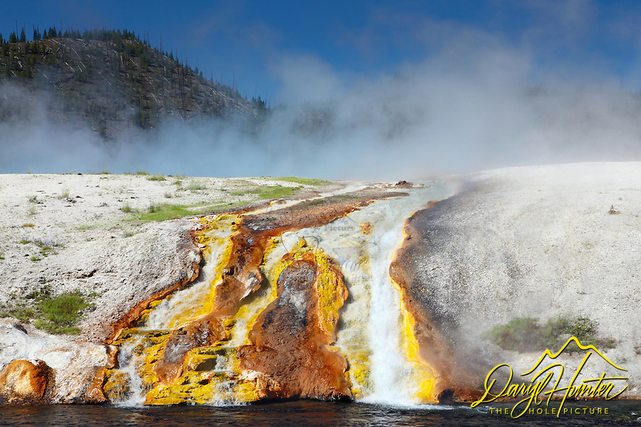 Excelsior Geyser Spring  produces 4000 gallons of boiling water per minute which flows from the pool to the Firehole River down this little waterfall as well as a few other boiling streams nearby just out of the frame. The yellow and orange color comes from microorganisms known as thermophiles, meaning heat loving bacteria.