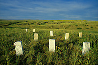 Little Bighorn Battlefield,  marble markers mark sites where men of 7th Calvary fell with Custer at Little Bighorn Battlefield National Monument, Montana, AGPix_0267.