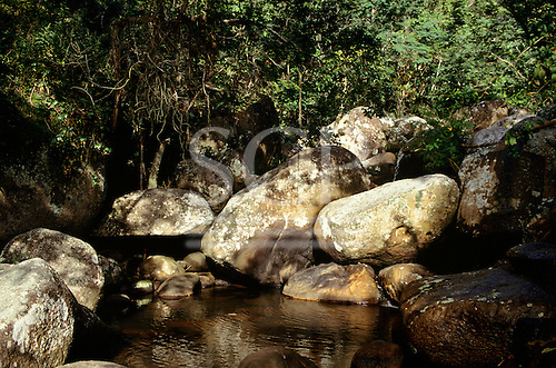 Ilha Grande, Angra dos Reis, Brazil. Shady pool surrounded by rocks and vegetation.