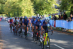 The peloton with Italy on the front on the 2nd circuit of Harrogate during the Women Elite Road Race of the UCI World Championships 2019 running 149.4km from Bradford to Harrogate, England. 28th September 2019.<br /> Picture: Seamus Yore | Cyclefile<br /> <br /> All photos usage must carry mandatory copyright credit (© Cyclefile | Seamus Yore)