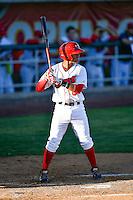 Franklin Torres (6) of the Orem Owlz at bat against the Ogden Raptors in Pioneer League action at Home of the Owlz on June 25, 2016 in Orem, Utah. Orem defeated Ogden 4-1.  (Stephen Smith/Four Seam Images)