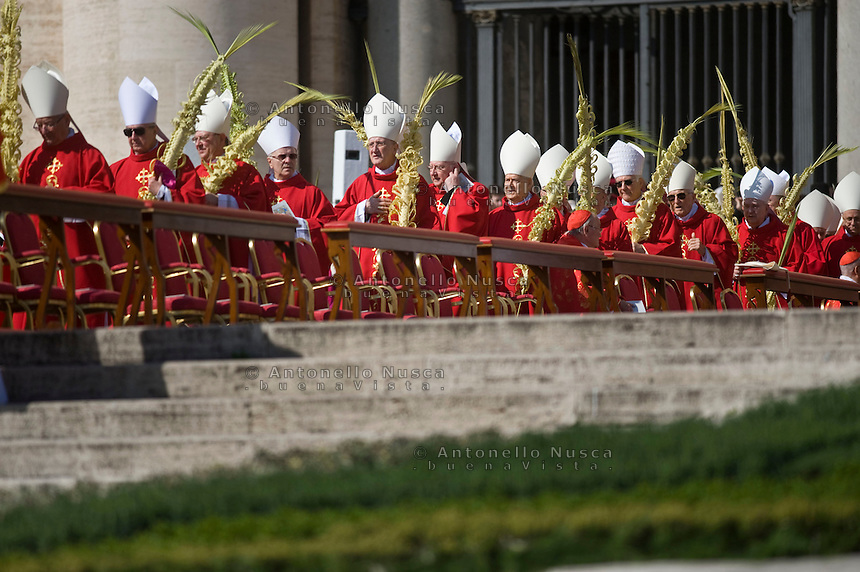 Rome, March 20, 2016. Cardinali partecipano alla messa per la celebrazione della Domenica delle palme. Cardinals hold palm leafs as they wait for the Palm Sunday Mass celebrated by Pope Francis, in St. Peter's Square, at the Vatican.