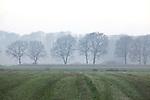 Europa, DEU, Deutschland, Nordrhein Westfalen, NRW, Rheinland, Niederrhein, Krefeld, Acker, Feld, Baeume, Dunst, Kategorien und Themen, Natur, Umwelt, Landschaft, Jahreszeiten, Stimmungen, Landschaftsfotografie, Landschaften, Landschaftsphoto, Landschaftsphotographie, Wetter, Wetterelemente, Wetterlage, Wetterkunde, Witterung, Witterungsbedingungen, Wettererscheinungen, Meteorologie, Wettervorhersage....[Fuer die Nutzung gelten die jeweils gueltigen Allgemeinen Liefer-und Geschaeftsbedingungen. Nutzung nur gegen Verwendungsmeldung und Nachweis. Download der AGB unter http://www.image-box.com oder werden auf Anfrage zugesendet. Freigabe ist vorher erforderlich. Jede Nutzung des Fotos ist honorarpflichtig gemaess derzeit gueltiger MFM Liste - Kontakt, Uwe Schmid-Fotografie, Duisburg, Tel. (+49).2065.677997, ..archiv@image-box.com, www.image-box.com]