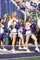 10 September 2016:  Washington cheerleader Becca Love entertained fans at the University of Washington in Seattle, WA.