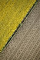 Europe/France/Pays de la Loire/Maine-et-Loire/Env d'Angers : Paysage agricole - Vue Aérienne