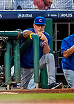 7 October 2017: Chicago Cubs Manager Joe Maddon watches play from the steps of the dugout during the second game of the NLDS against the Washington Nationals at Nationals Park in Washington, DC. The Nationals defeated the Cubs 6-3 and even their best of five Postseason series at one game apiece. Mandatory Credit: Ed Wolfstein Photo *** RAW (NEF) Image File Available ***