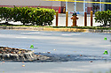 MIRAMAR, FL - MAY 12: Green cones mark where debris from a small Piper PA-34 plane that crashed is shown on May 12, 2020 in Miramar, Florida. The plane was seen flying low over an intersection before clipping a power line and crashing, killing the pilot, identified as 25-year-old Mark Daniel Scott, and leaving the flight instructor seriously injured. A third person on the ground was injured by debris.   ( Photo by Johnny Louis / jlnphotography.com )