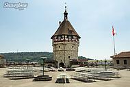 Image Ref: SWISS060<br /> Location: Schaffhausen, Switzerland<br /> Date of Shot: 20th June 2017