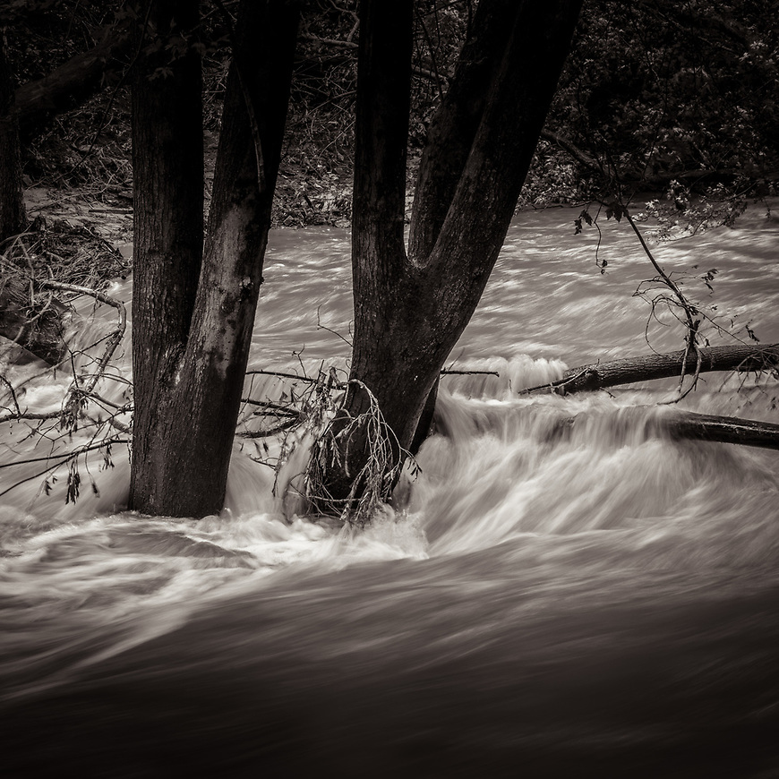 IF THE CREEK DON'T RISE -- All it took was 13 inches of rain in the past 24 hours to turn the gentle creek behind our place into a raging river. Good day to stay indoors and edit photos! #michaelknapstein #midwestmemoir #blackandwhite #B&W #monochrome #motherfstop #wisconsin  #bwphotography #myfeatureshoot  #fineartphotography #americanmidwest #squaremag #lensculture #mifa #moscowfotoawards #moscowinternationalfotoawards #rps #royalphotographicsociety #CriticalMass #CriticalMassTop200 #photolucida  #portfolioshowcase11 #thegalaawards #thepolluxawards #flakphoto #ipe160 #ipe161 #grainedephotographe  #galleryofwisconsinart