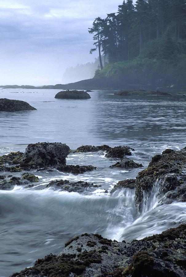 Coastal shoreline, Strait of Juan de Fuca, Washington
