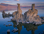 Mono Basin Scenic Area, CA<br /> Pre-dawn light on tufa tower with reflections on the clam surface of Mono Lake