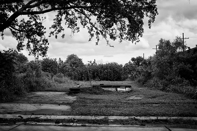 A driveway, front steps and an empty lot are all that remain of where a home once stood that was completely washed away in the Lower 9th Ward in New Orleans - five years later after Hurricane Katrina.