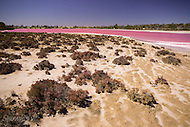 Image Ref: CA433<br /> Location: Murray Sunset National Park<br /> Date of Shot: 29th October 2016