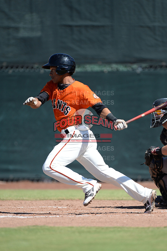 San Francisco Giants outfielder Randy Ortiz (32) during an instructional league game against the Arizona Diamondbacks on October 3, 2013 at Giants Baseball Complex in Scottsdale, Arizona.  (Mike Janes/Four Seam Images)