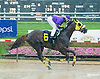 Likeuasafriend  winning at Delaware Park on 6/30/15