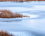 Light snow on Belle Isle Marsh, East Boston, MA, USA