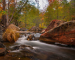 Autumn in Oak Creek Canyon, Arizona  ©2017 James D Peterson.  If you head a few miles north of Sedona at just the right time of year, you might find scenes like this in the canyon.