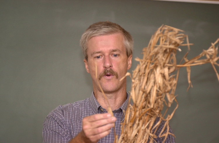 15546Art Trese: (grain to bread)waffle making in Plant Biology