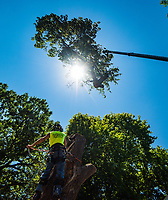 07-02-18 Maximum Tree Service crane shoot Minneapolis Event Photography