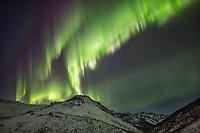 Aurora in the White Mountains National Recreation Area.