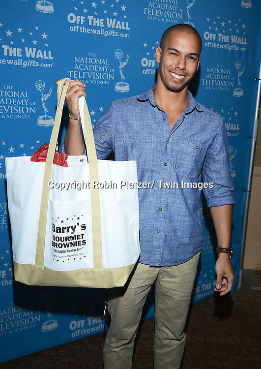 Bryton James attends the Gifting Suitefor the Daytime Emmy Awards by Off The Wall Productions on June 15, 2013 at the Beverly Hills Hotel in Beverly Hills, California.
